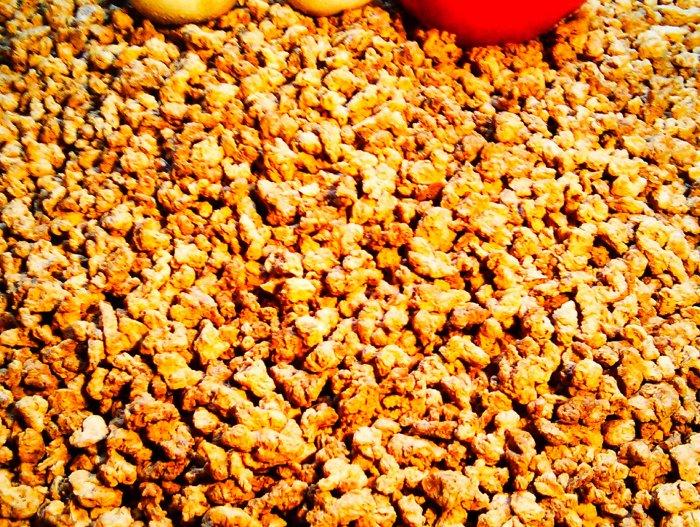 protéines de soja naturel