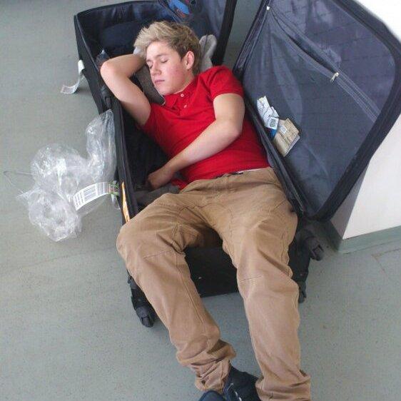 Niall trop chou en train de dormir