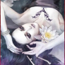 Profil de Black-rose-forum