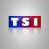 Profil de TS1sims