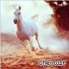 Cheval16