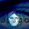 Profil de siscomix