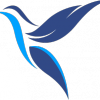 Profil de TransatX
