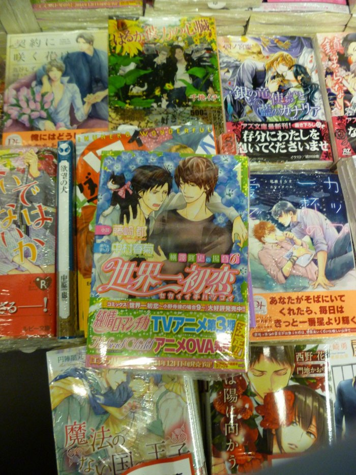 Le dernier roman de Sekaiichi ♥