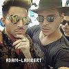 Profil de Adam-Lambert