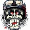 Profil de skullvente