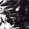 Profil de Kiasa-Feil-Blue-Exorcist