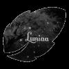 Luniaa