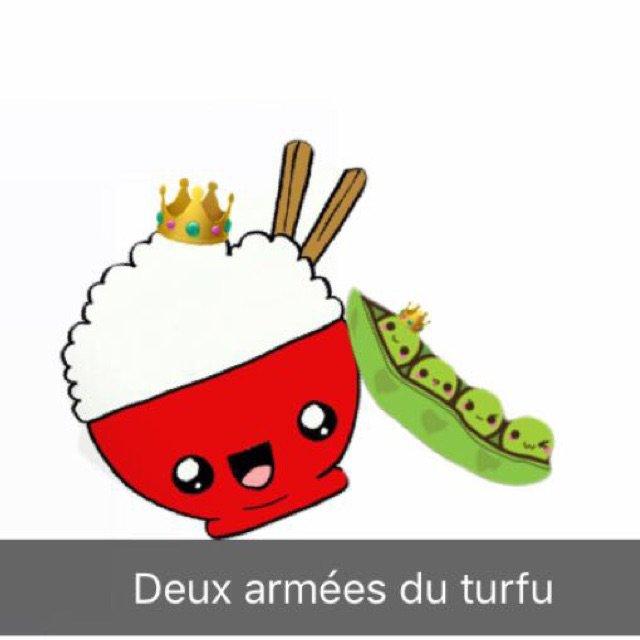 deux armée du turfu