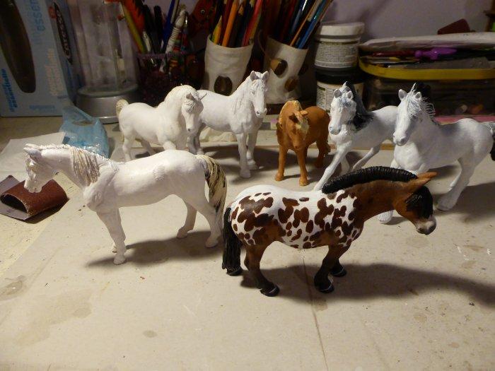 des poney presque tous blanc
