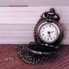 wts-bis