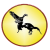 Profil de QaibBoxingClub