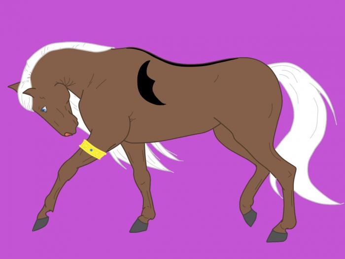 Zya Horse 1
