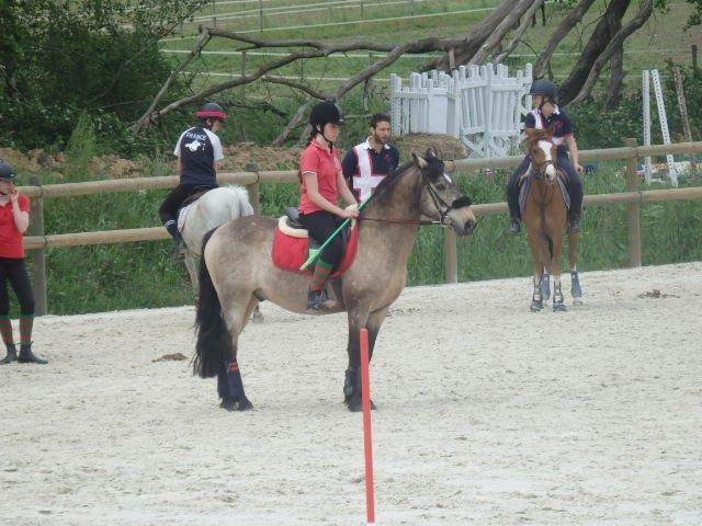 Latino - Pony-Games 08/05/16