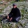 Bouabdellah-Garah