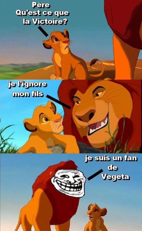 Fan de Vegeta x)