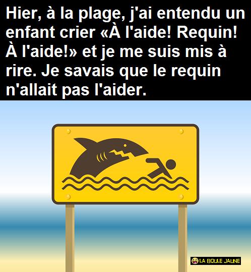 «À l'aide ! Requin ! À l'aide !»
