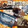 kingkongsimulator