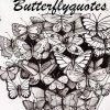 Profil de LittleMagicButterfly
