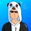 Profil de Ako-Bley