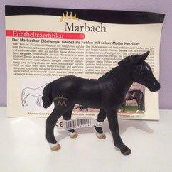 Marbach Poulain - Photo Internet