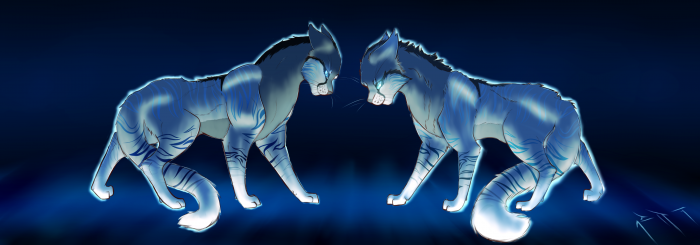 Mes chats jumeaux