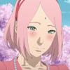 Profil de lSakura-Harunol