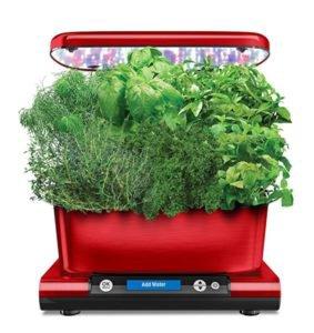 Get Started Fast With Indoor Gardening - Indoor Herb Kit