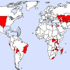 Qu'est-ce que la peste? Où se trouve-t-elle? Infographie de l'OMS