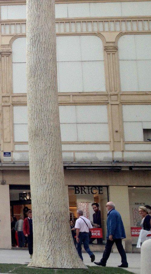 Dijon : l'½uvre de Didier Marcel a été achetée par la Ville au prix de 26 000 ¤