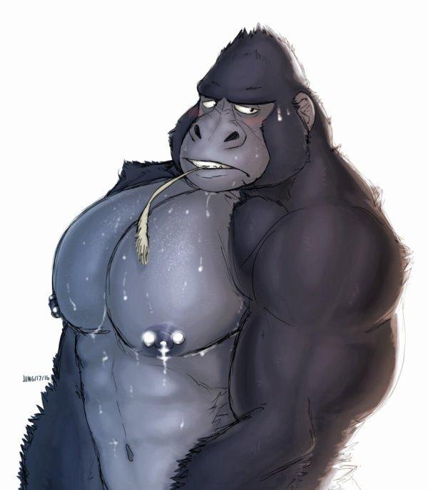 Gros pecs juteux de gorille tous frais ! <3