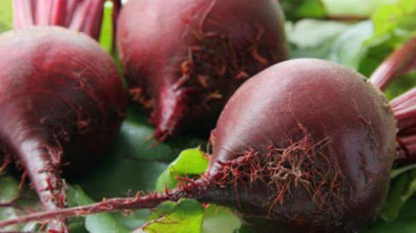 Beetroot Health Benefits – Why Should We Eat Beetroot ? - Healthy Food Society
