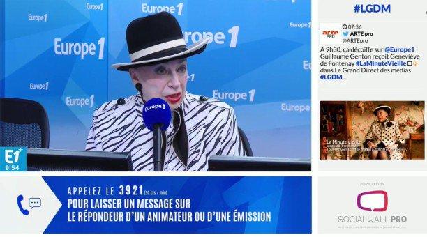 Geneviève de Fontenay se verrait bien chroniqueuse dans TPMP... avant de charger Vincent Bolloré