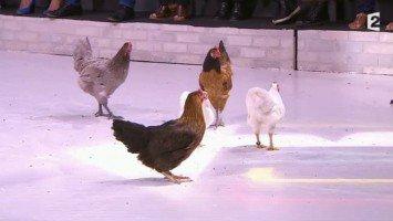 Vidéo - Comment ça va bien ! - Comment ça va bien ! La poule aux œufs d'or - 01-09-2014