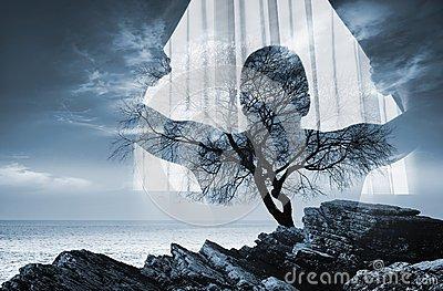 Sobre una rama de sombra.