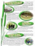 Fichier PDF N°36.pdf