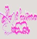 Posté le dimanche 06 novembre 2011 01:46 - LA CON DE C MORT AU PERSONNE KIL LESSE DES...