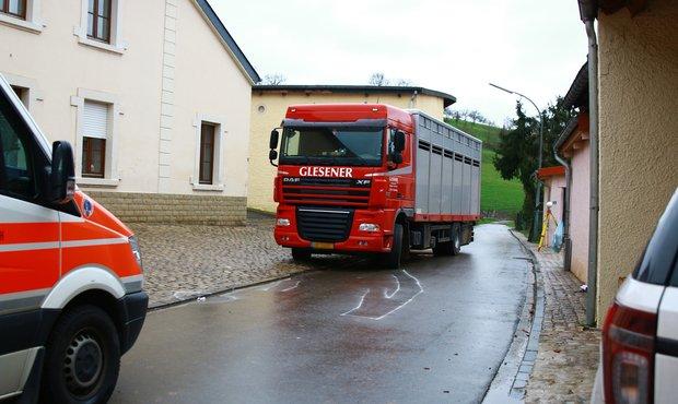 31-04-2018 - Roedt - Tragique accident - Un agriculteur tué par un camion transport de bêtes ce matin à Roedt