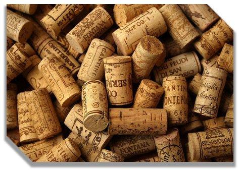 Vineyard Pennsylvania - White Wines to Enjoy During Summer