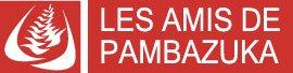 Pambazuka - La lente émergence politique des Africaines de l'ouest francophone