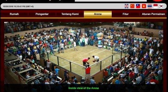Situs Taruhan Online Sabung Ayam Indonesia | Sabung Ayam Online