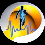 Zinc: El amplificador de la Glándula del Timo, su influencia sobre el sistema inmune - Suplementos Deportivos | El Blog de la Salud