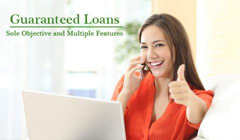 Guaranteed Loans - Sole Objective and Multiple Features | Articles Studio
