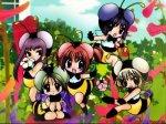 les mew mew en abeille: bzzzzzzzzz - Blog de ichigo--momomiya-x3