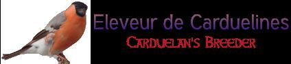 La Trichomonose chez le Bouvreuil | Eleveur de Carduelines ...