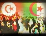 تحية تقدير و إحترام للشعب التونسي الشقي - Blog de chichi-tlemcen