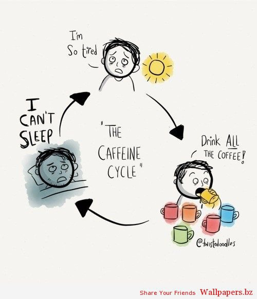 Vicious Cycle or Delicious Cycle? | Funny Wallpapers