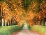 Le bonheur est le chemin