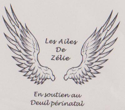 "association ""les ailes de Zélie"""