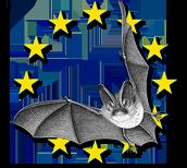 Les Chiroptères | Nuit Internationale de la chauve-souris | EDITION 2013